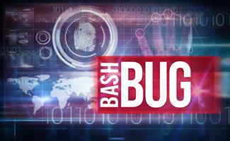 bash-bug-virus